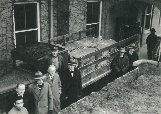 Stam Coffins